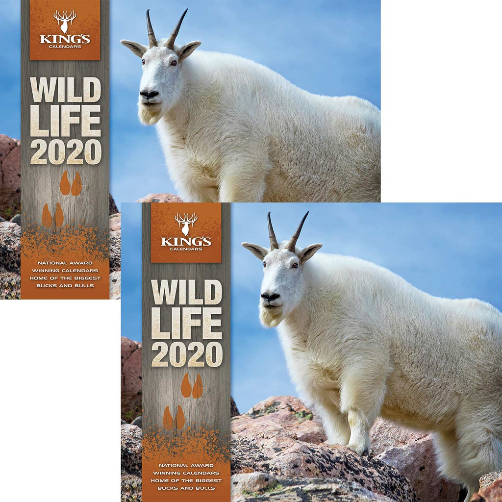 2020 King's Wildlife Calendar TWIN PACK | King's Camo
