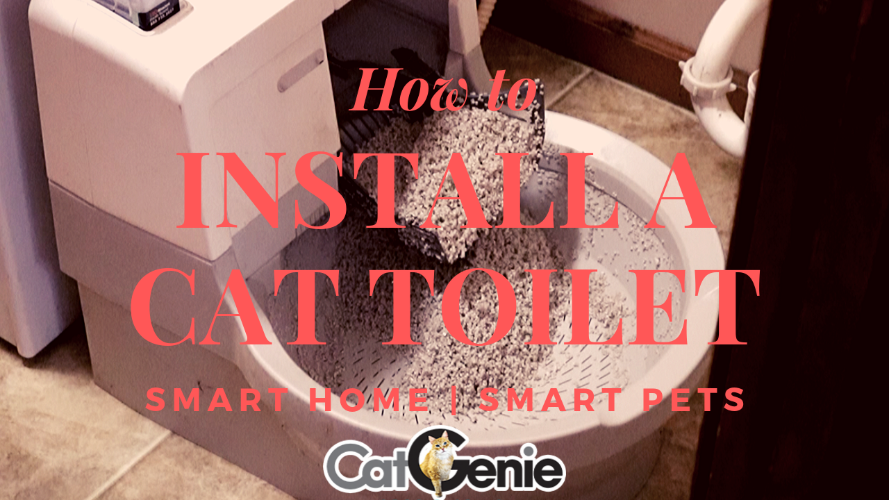 How to install a CatGenie Automatic Kitty Litter Box