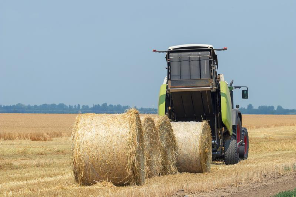 5 Ways to Prep and Store Hay Bales to Feed Your Livestock