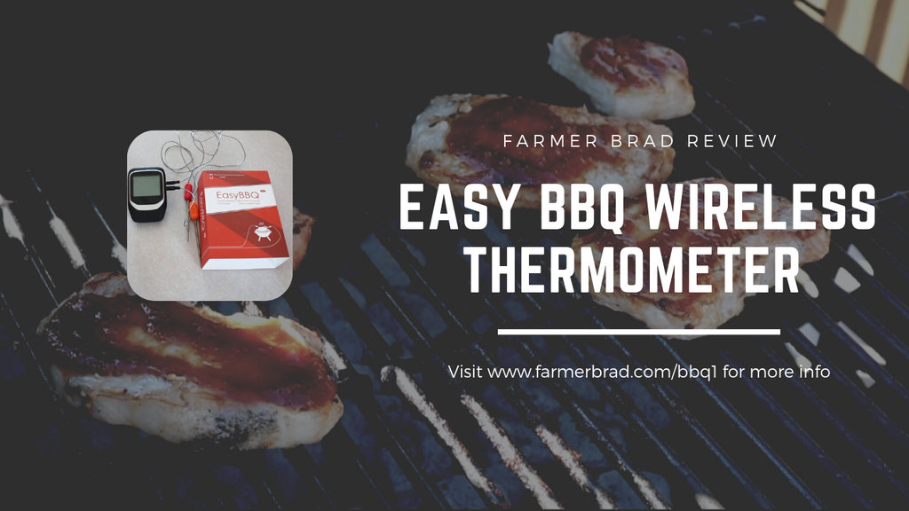 BBQ Thermometer Review