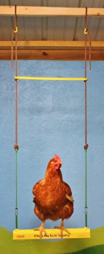 Fowl Play Products, The Chicken Swing, Chicken Toy ,13100, Country Corn, 1 , Yellow Green & Brown - Farmer Brad LLC