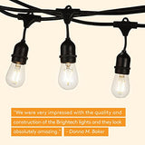 Brightech Ambience Pro LED Commercial Grade Outdoor Light Strand with Hanging Sockets - Dimmable 2 Watt Bulbs - 48 Ft Market Cafe Edison Vintage Bistro Weatherproof Strand for Porch Patio Garden -Blk - Farmer Brad LLC