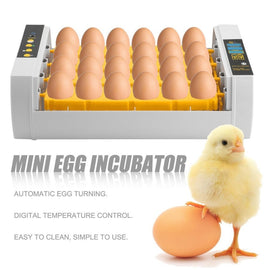 Large Capacity Practical 24 Eggs Mini Incubator For Chicken Poultry Quail Turkey Eggs Home Use Automatic Egg Turning - Farmer Brad LLC