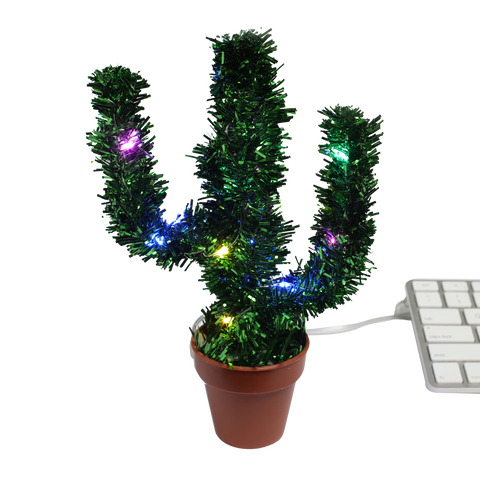 merry christmas cactus with glowing led