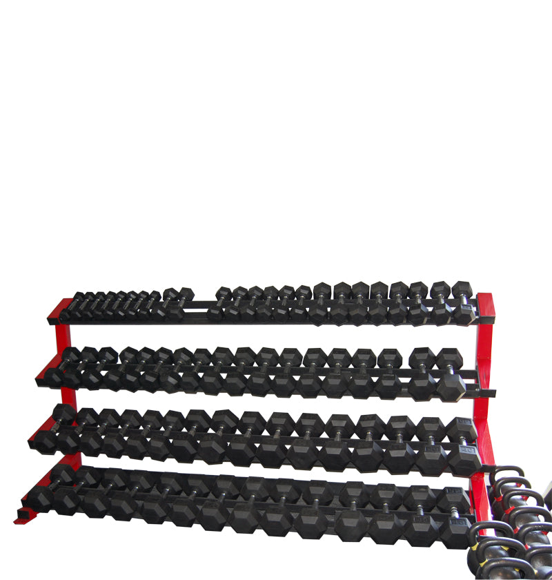 "4 Tier Dumbbell Rack 75"" Rails (5-100) (2x3 Heavy duty legs) 50"" Height"