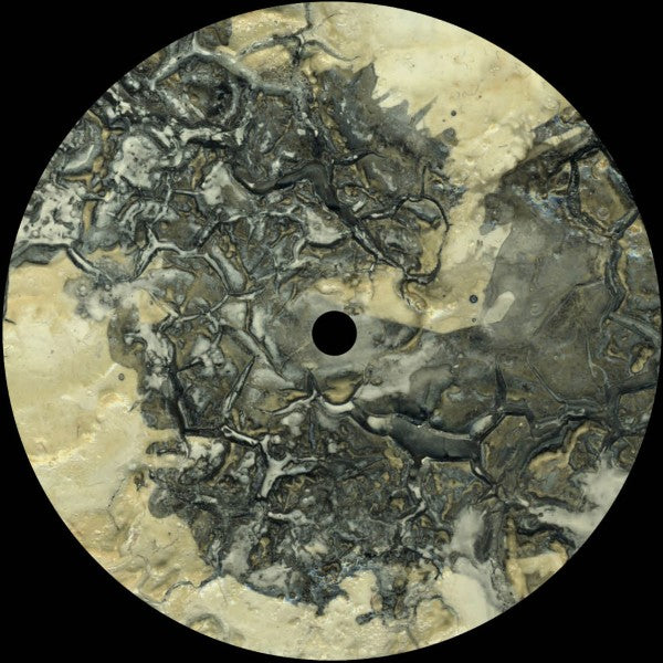 "Morphology ‎– Frozen State 12"" - Vinylhouse"