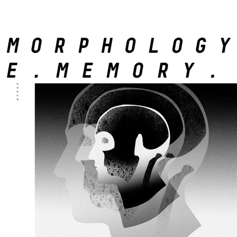 Morphology ‎– Collective Memory 12""