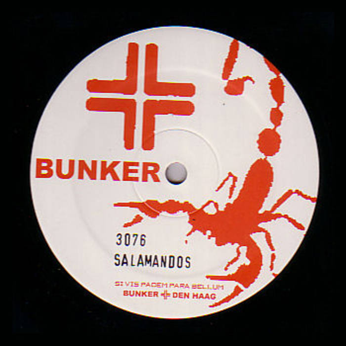 Salamandos ‎– The World To Come 12""