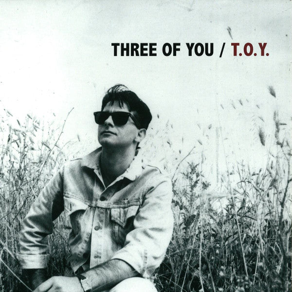 Three Of You ‎– T.O.Y. 12""
