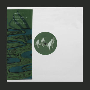 Circadian Rhythms - Basic Moves 11 DoLP - Vinylhouse