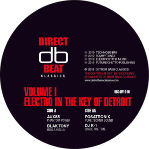 V/A - Electro In The Key Of Detroit Vol. 1 12""