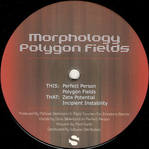 Morphology ‎– Polygon Fields 12""