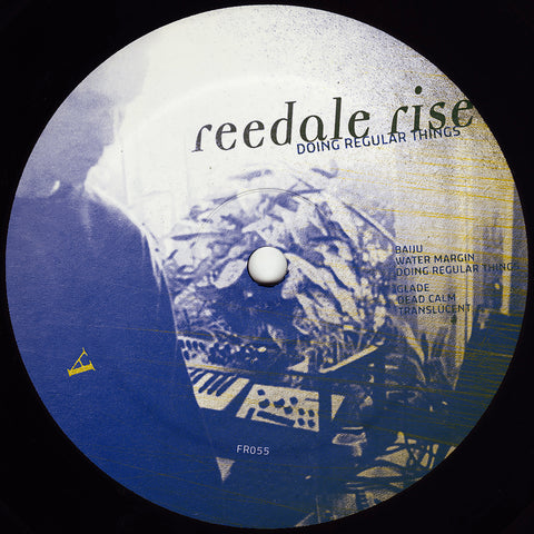 Reedale Rise - Doing Regular Things 12""