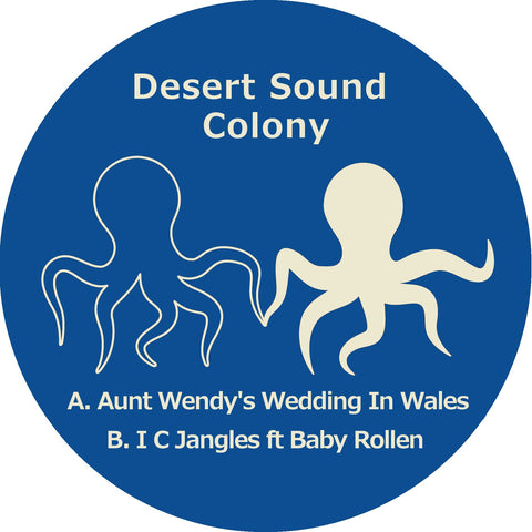 "Desert Sound Colony ‎– Aunt Wendy's Wedding In Wales 12"" - Vinylhouse"