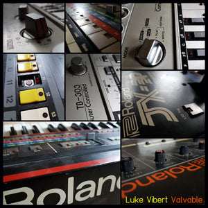 Luke Vibert ‎– Valvable DoLP