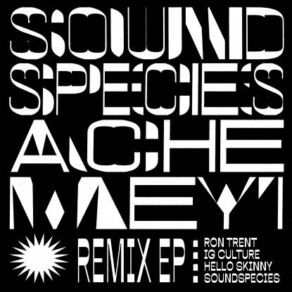 Soundspecies, Ache Meyi ‎– Remix EP