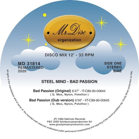 Steel Mind ‎– Bad Passion 12""