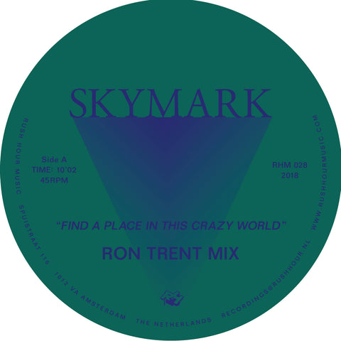 Skymark ‎– Find A Place In This Crazy World 12""