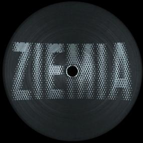 "Earth Trax, Private Press, Newborn Jr. ‎– Ziemia 001 12"" - Vinylhouse"