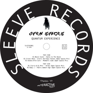 Open Spaces ‎– Quantum Experience 12""