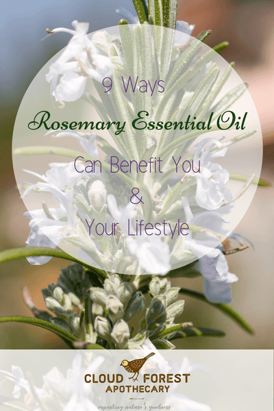9 Ways Rosemary Essential Oil Can Benefit You & Your Lifestyle