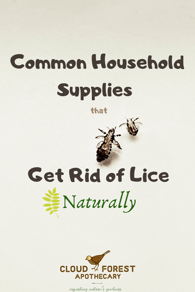 Common Household Supplies That Get Rid of Head Lice Naturally