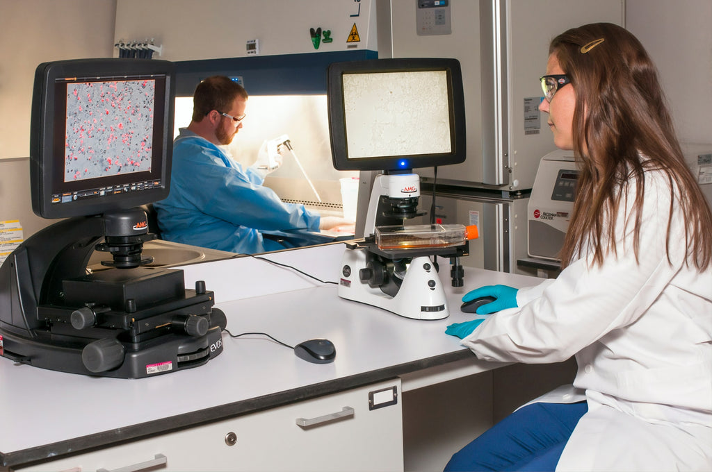 5 Innovations In Cancer Therapy