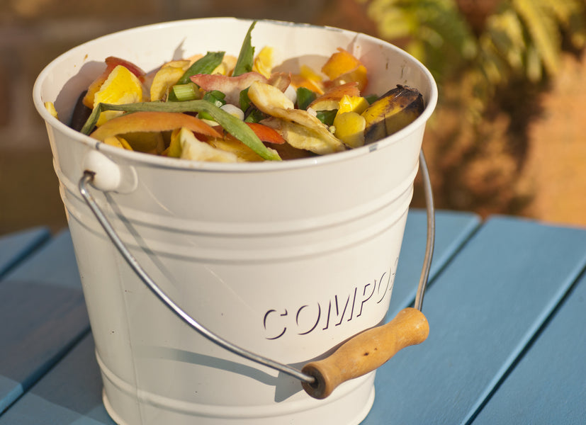 Bokashi Bucket: A Solution For Reducing Food Waste