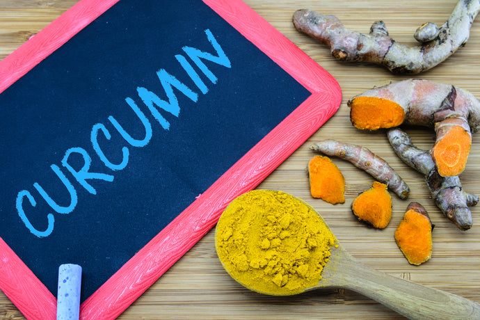 Can Timed Release Of Turmeric Stop Cancer Cell Growth?