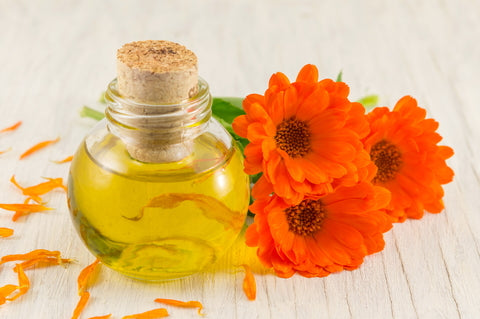 Key Benefits Of Marigold Oil