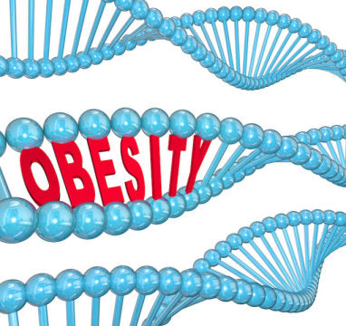 Link Between Teenage Obesity And Stiffening Arteries