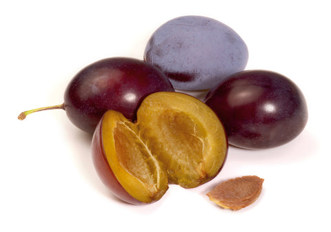 Skin Benefits Associated With Plum Kernel Oil