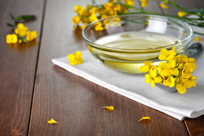 Why Rapeseed Oil Is Essential For Skin