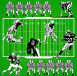 Sports Fabric, Football Field Fabric with players 1217