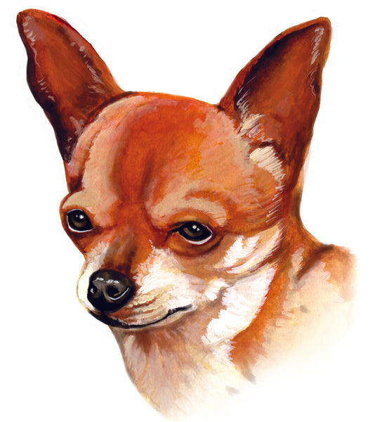 Dog Fabric, Chihuahua Custom Printed 5472