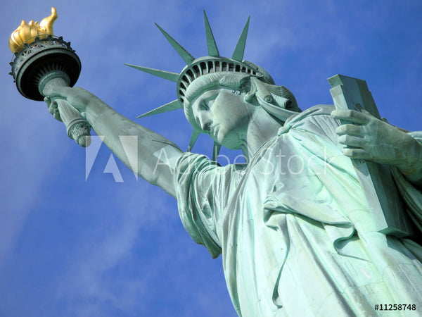 Patriotic Fabric Statue of Liberty Against blue sky 5748
