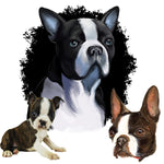 Dog Fabric, Boston Terrier Fabric Panel, Head and Shoulders, 2127 - Beautiful Quilt