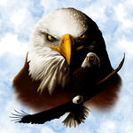 Bird Fabric, Eagle Fabric, Three Eagles in the sky 1179 - Beautiful Quilt