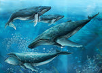 Ocean Fabric Humpback Whale fabric Custom Panel 5484