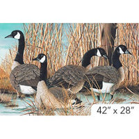 Bird Fabric, Canada Goose, Wildlife Panel 5915 - Beautiful Quilt