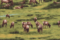 Wildlife Fabric Elk Fabric The Elk Gathering Elks in Meadow 4058