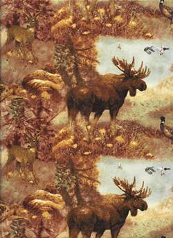Wildlife Fabric, Moose Fabric, Mountain Woods, All Over Realistic Moose 7045 - Beautiful Quilt