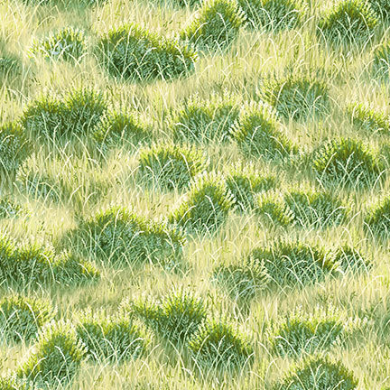 Landscape Fabric, Grass Fabric, Unbridled 7205 - Beautiful Quilt