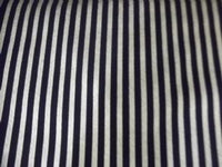 Blender Fabric, Gold Std/Simply Sterling, Metallic Silver Stripe on Black 7249