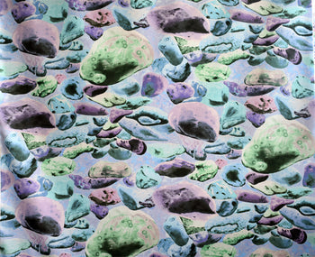 Abstract Fabric Frond Winter Landscape rock 4479