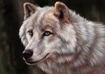 Wolf Fabric, Watercolor Wolf Fabric Panel 1577 - Beautiful Quilt