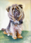 Dog Fabric, Yorkshire Terrier Fabric Panel, Yorkie Fabric Panel, 3341 - Beautiful Quilt