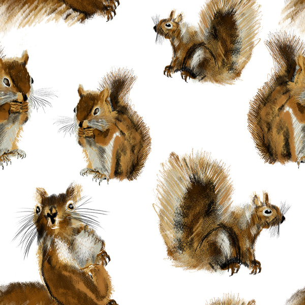 Animal Fabric, Squirrel Fabric, Squirrel all over on White, Cotton or Fleece 3563 - Beautiful Quilt