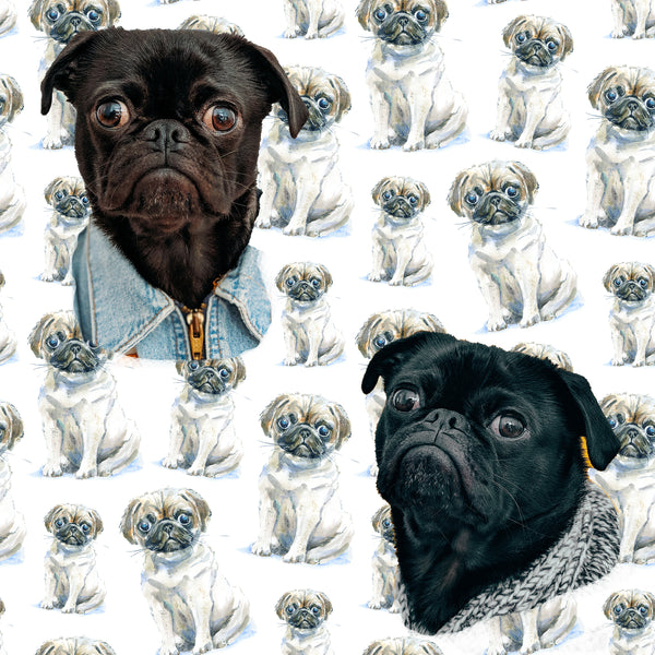 Dog Fabric, Pug Fabric, Big and Little Pug Fabric, 1351
