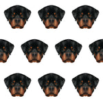 Dog Fabric, Rottweiler Fabric 1369 - Beautiful Quilt